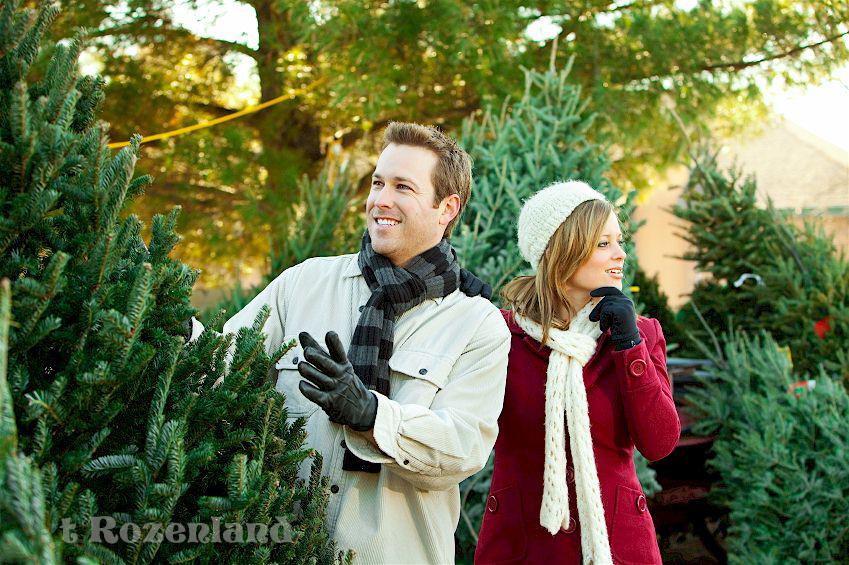 Kerstboom Kiezen Foto